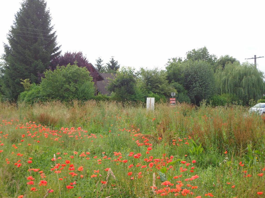 Achat Terrain  à Hauteville-sur-Fier - vignette-1