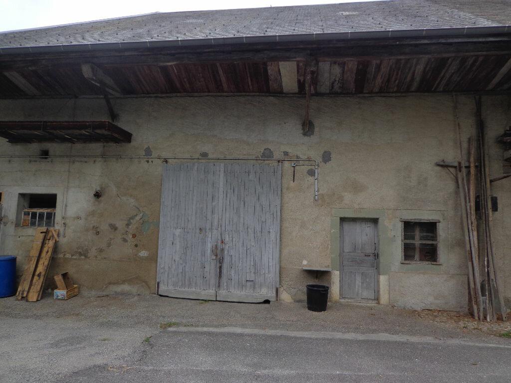 Achat Maison 1 pièce à Rumilly - vignette-3