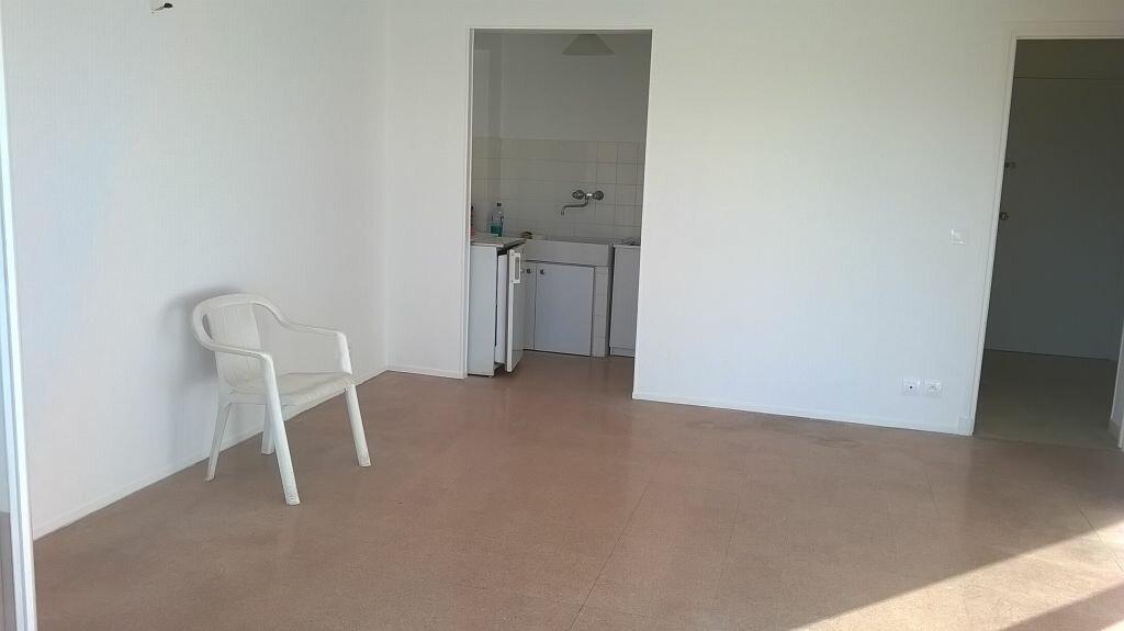 Location Appartement 1 pièce à Vallauris - vignette-5