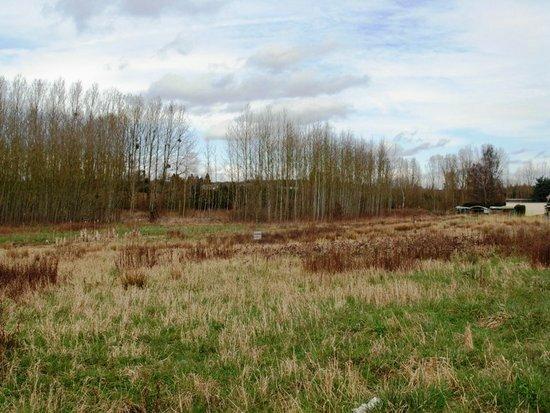 Achat Terrain  à Villequier-Aumont - vignette-1