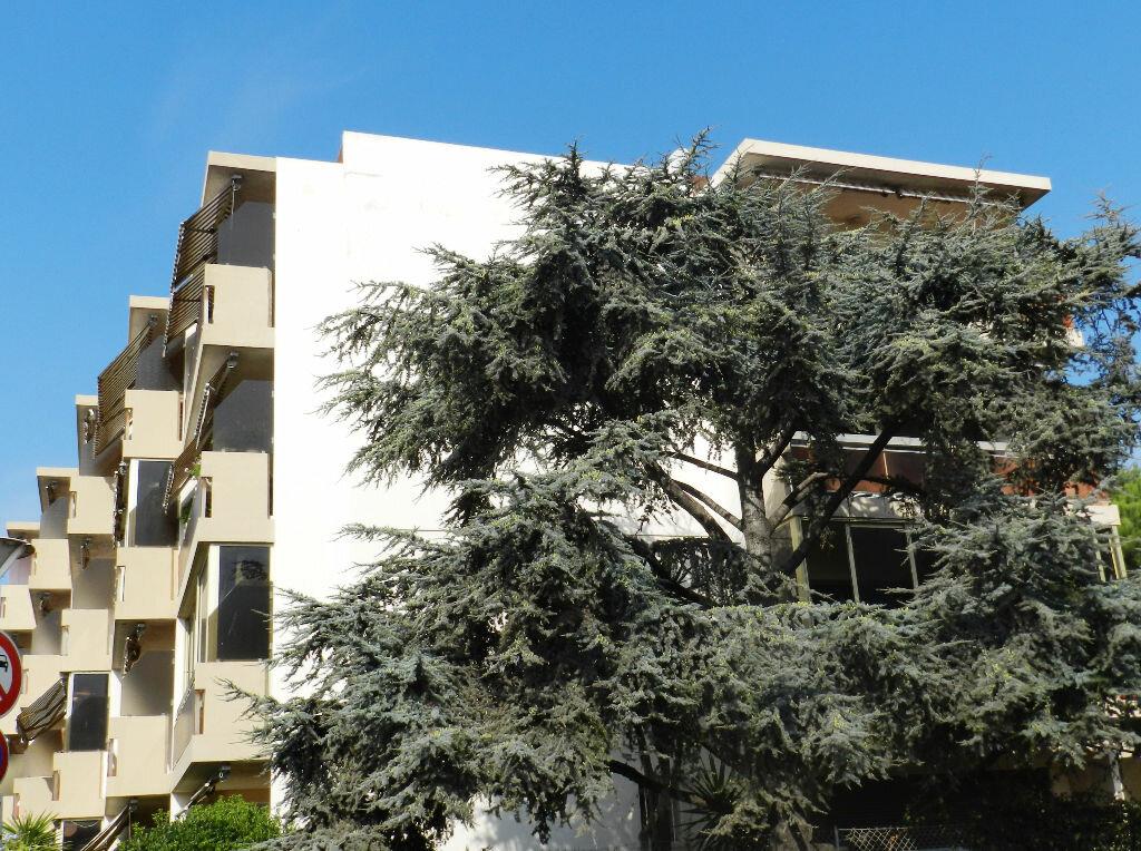 Achat Appartement 1 pièce à Saint-Laurent-du-Var - vignette-5
