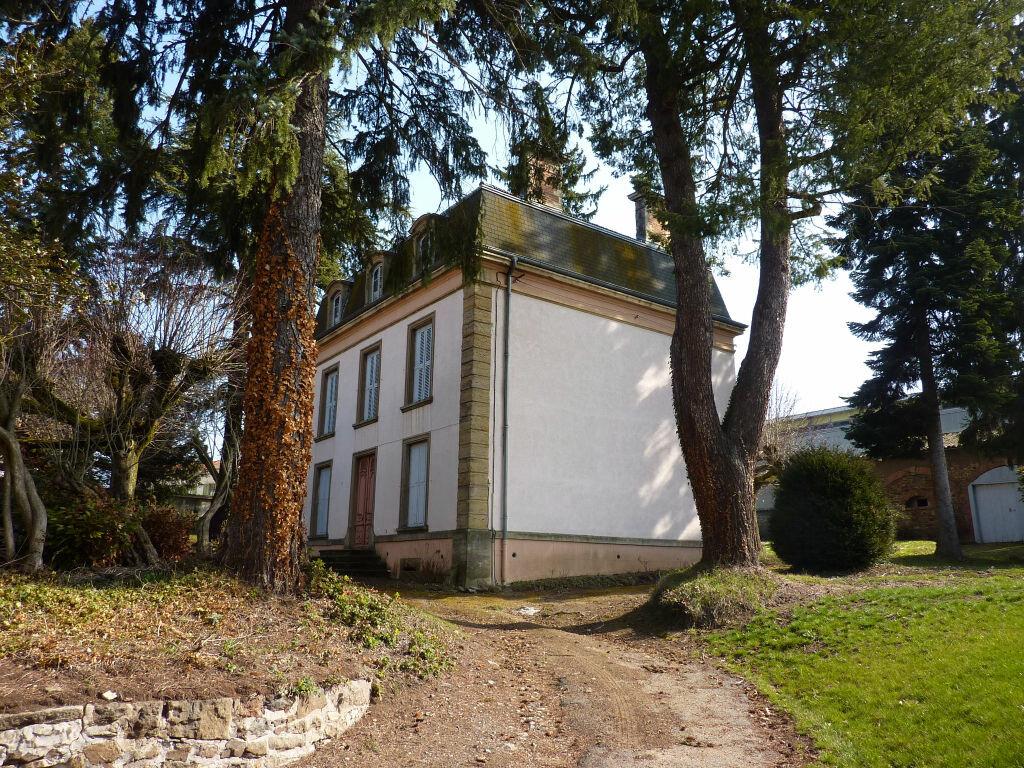 Achat Maison 12 pièces à Saint-Symphorien-sur-Coise - vignette-3