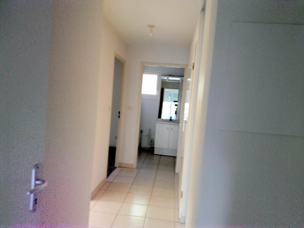 Location Appartement 3 pièces à Carcassonne - vignette-4
