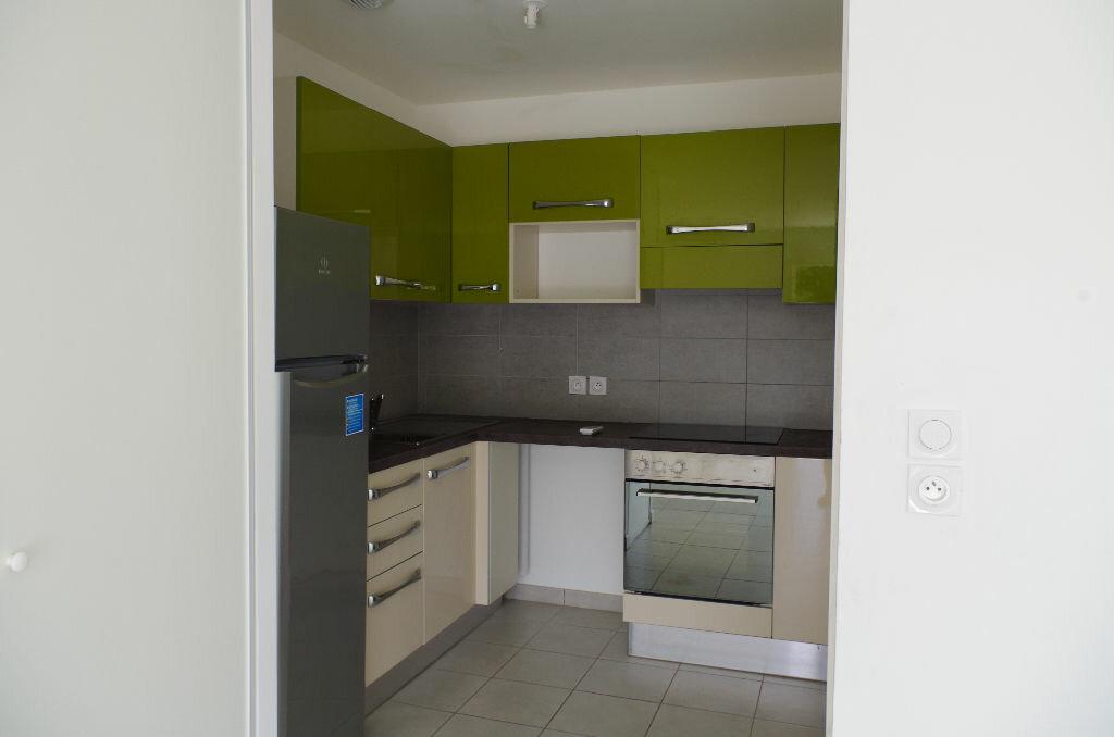 Location Appartement 3 pièces à Oletta - vignette-3