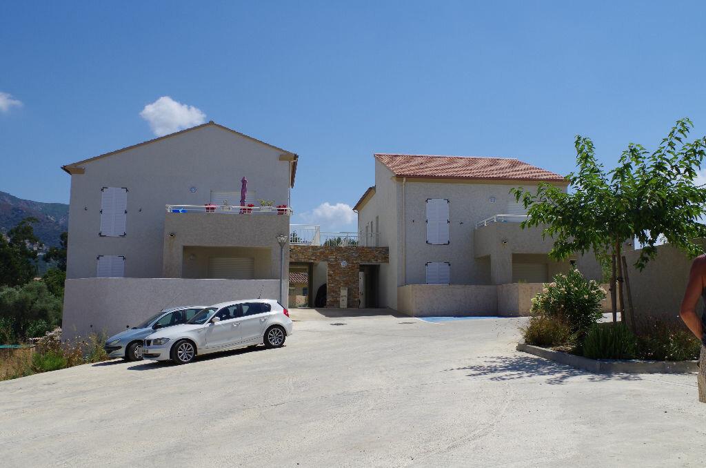 Location Appartement 3 pièces à Oletta - vignette-4