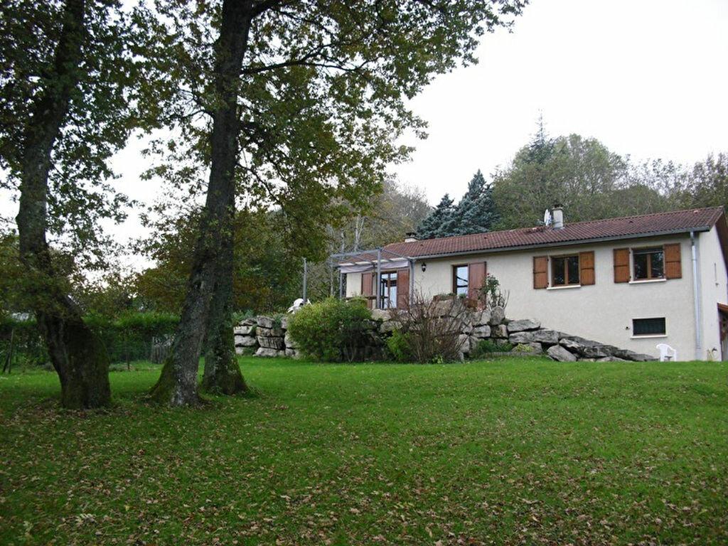 Achat Maison 4 pièces à Châtillon-la-Palud - vignette-1