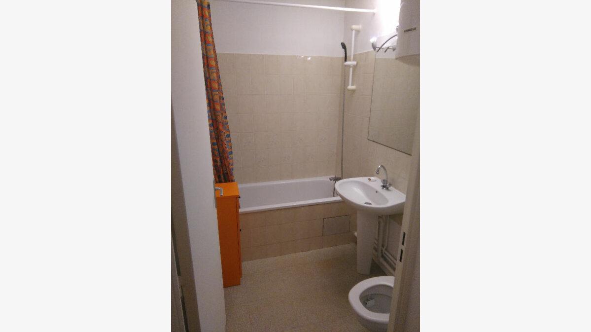 Location Appartement 1 pièce à Toulouse - vignette-6