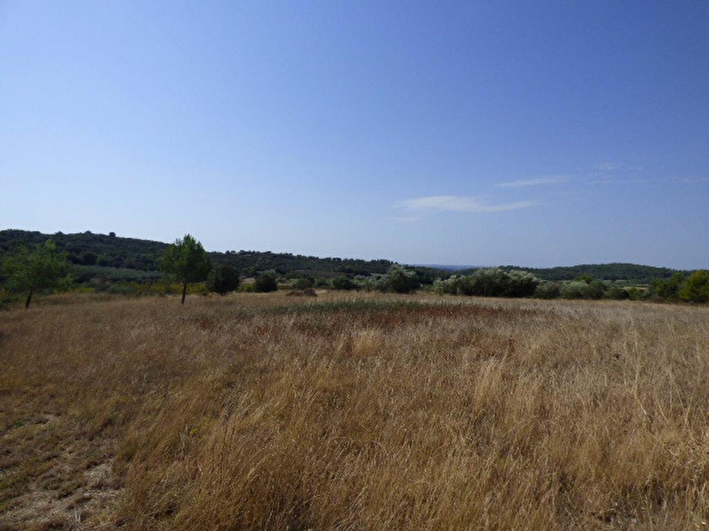 Achat Terrain  à Cabrières - vignette-3