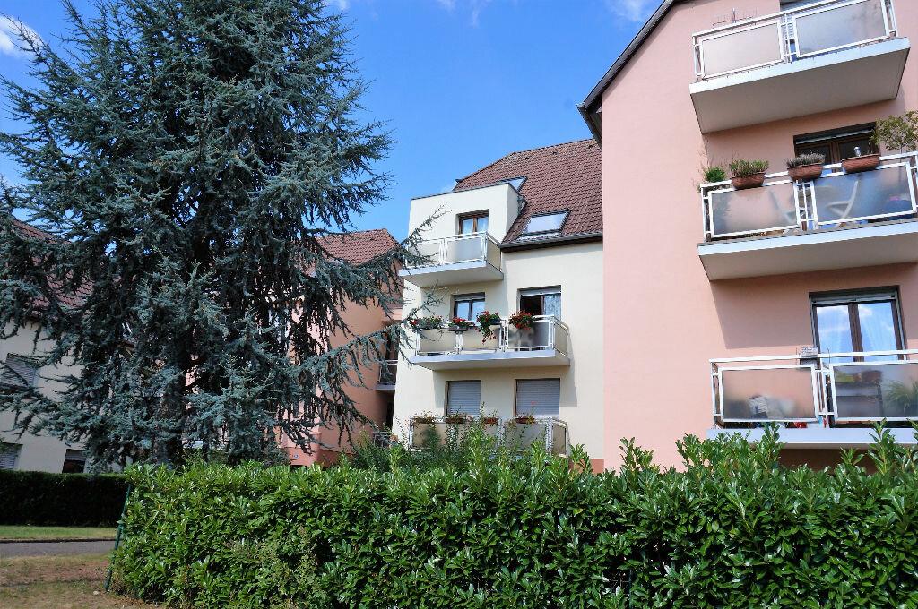 Achat Appartement 4 pièces à Colmar - vignette-1