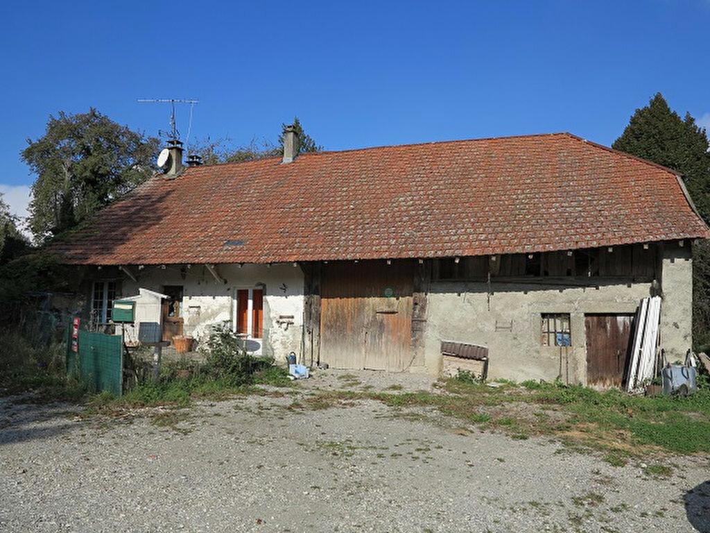 Achat Maison 4 pièces à Menthonnex-en-Bornes - vignette-1