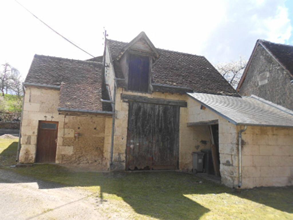 Achat Maison 5 pièces à Chissay-en-Touraine - vignette-2