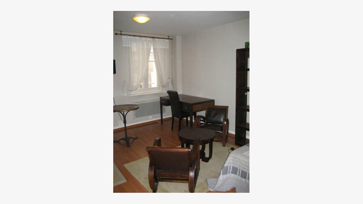 Location Appartement 1 pièce à Nancy - vignette-3