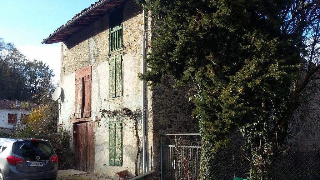 Achat Maison 1 pièce à Saint-Paul-de-Jarrat - vignette-2