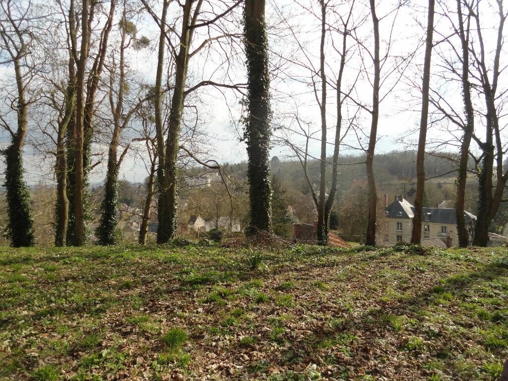 Achat Terrain  à Chaumont-en-Vexin - vignette-4