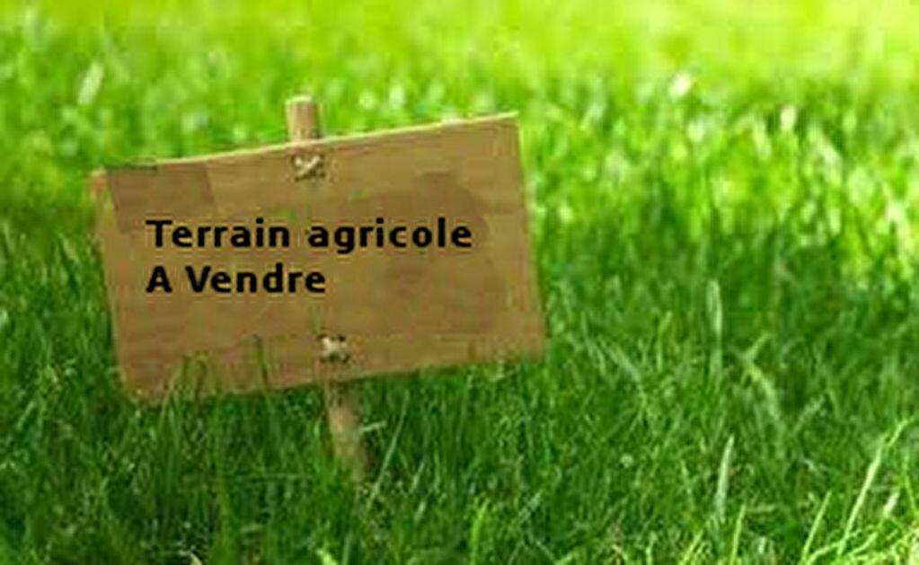 Achat Terrain  à Rouvray-Catillon - vignette-1