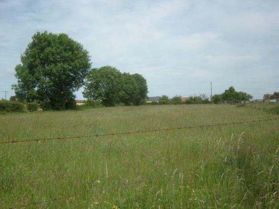 Achat Terrain  à Gournay-en-Bray - vignette-1