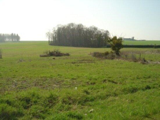 Achat Terrain  à Montolivet - vignette-1