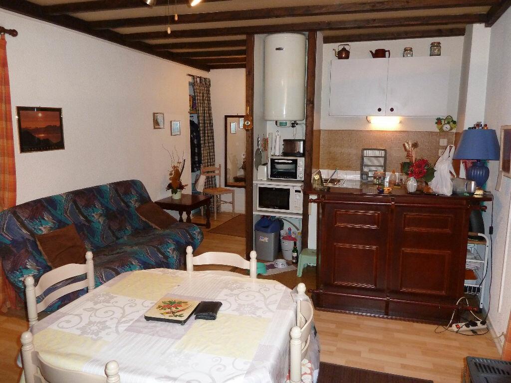Achat Appartement 2 pièces à Eaux-Bonnes - vignette-4