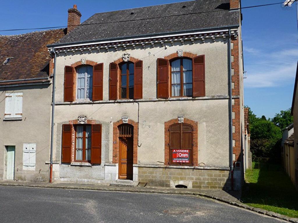 Achat Maison 9 pièces à Pressigny-les-Pins - vignette-1