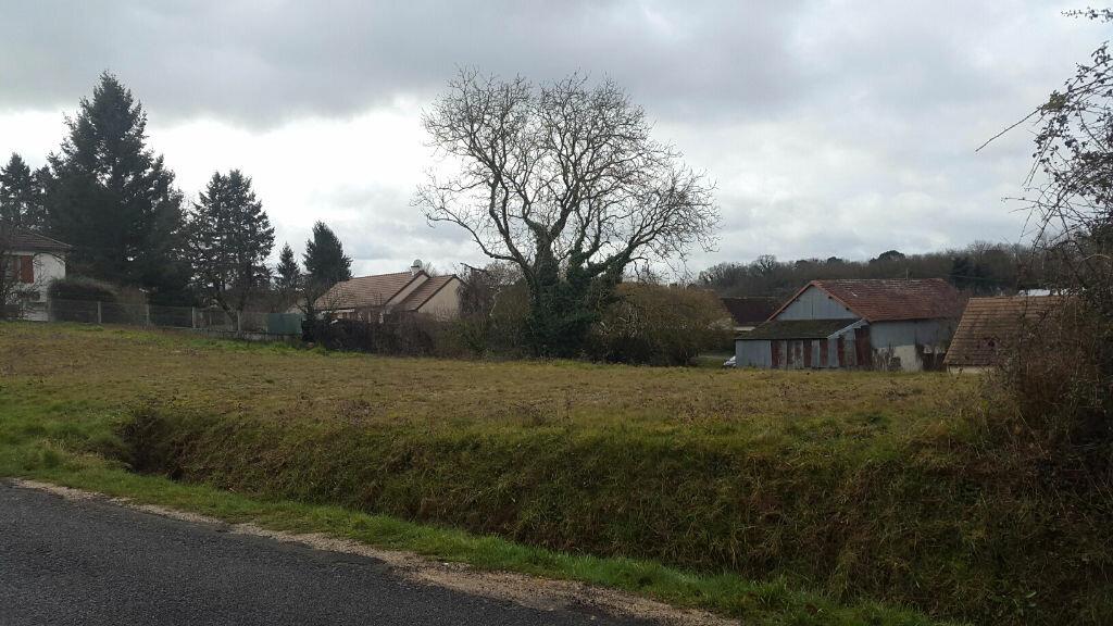 Achat Terrain  à Saint-Julien-sur-Cher - vignette-1