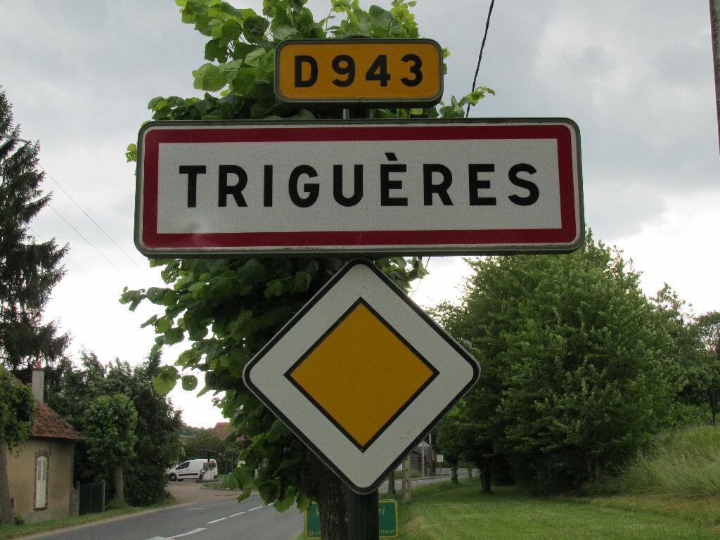 Achat Terrain  à Triguères - vignette-1
