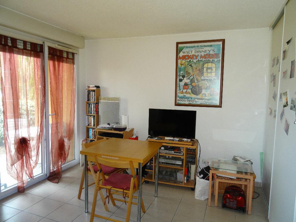 Achat Appartement 1 pièce à Auterive - vignette-2
