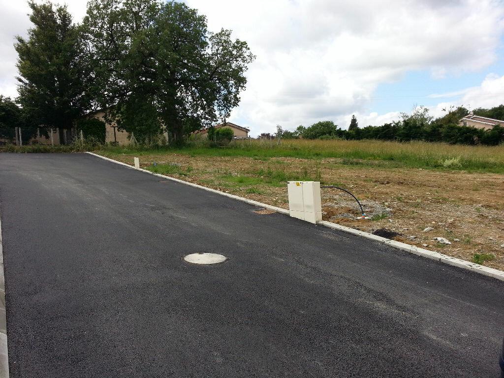 Achat Terrain  à Beaumont-sur-Lèze - vignette-1