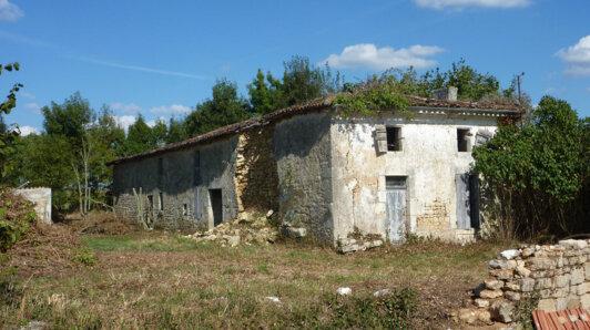 Achat Maison Saint-Savinien
