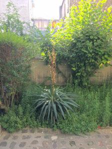 Achat Appartement Fontenay-sous-Bois