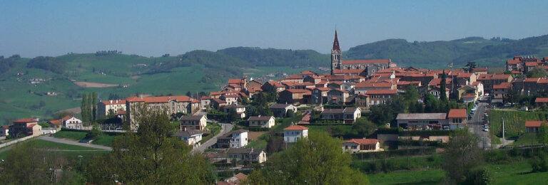 Achat Terrain  à Saint-Martin-en-Haut