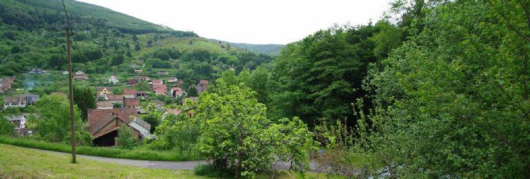 Achat Terrain  à Neuviller-la-Roche