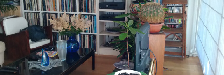 Achat Appartement 1 pièce à Paris 13