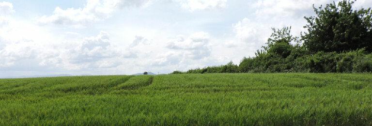 Achat Terrain  à Barjac