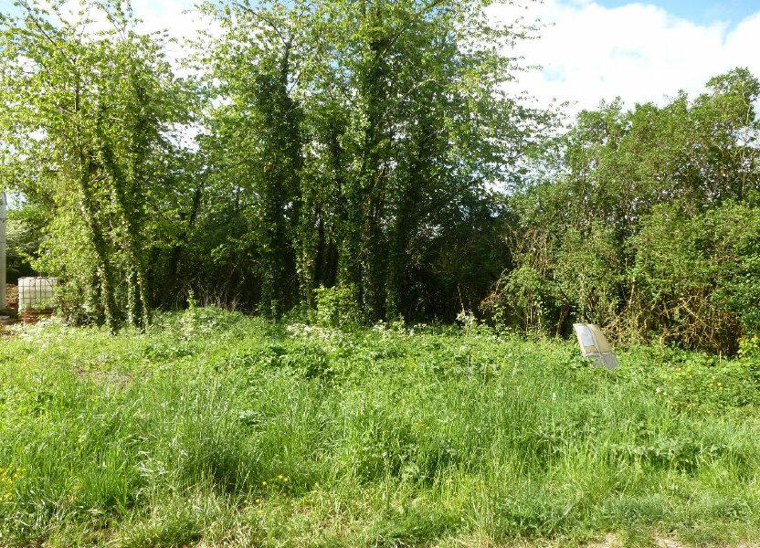 Terrain à vendre 1123m2 à Boissy-le-Châtel