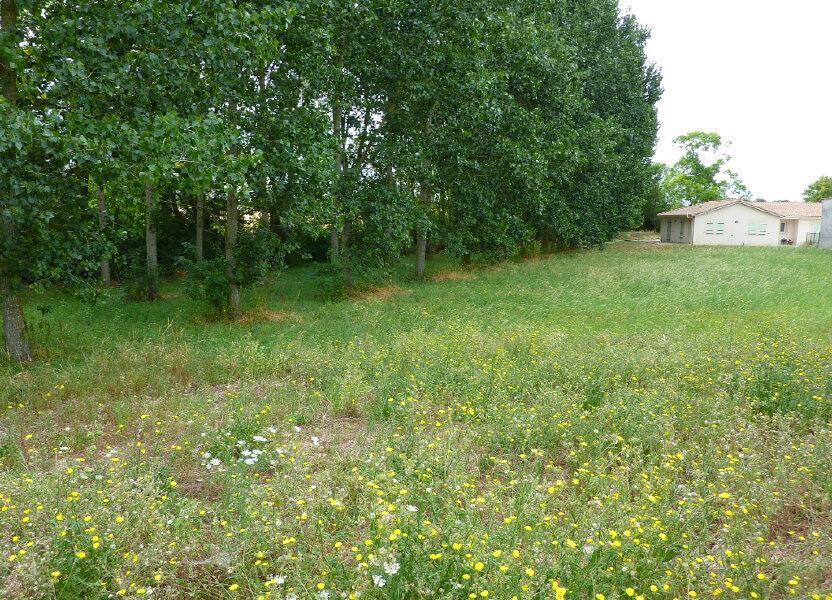 Terrain à vendre 2521m2 à Doeuil-sur-le-Mignon