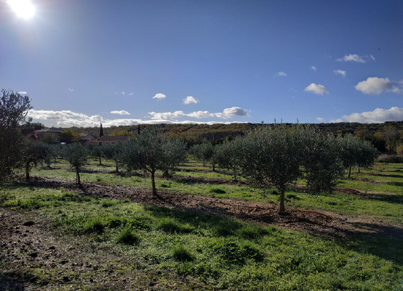 Terrain à vendre 4425m2 à Lézignan-la-Cèbe