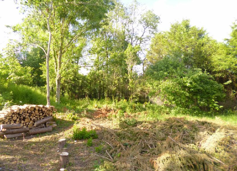 Terrain à vendre 1251m2 à Neuville-sur-Ailette