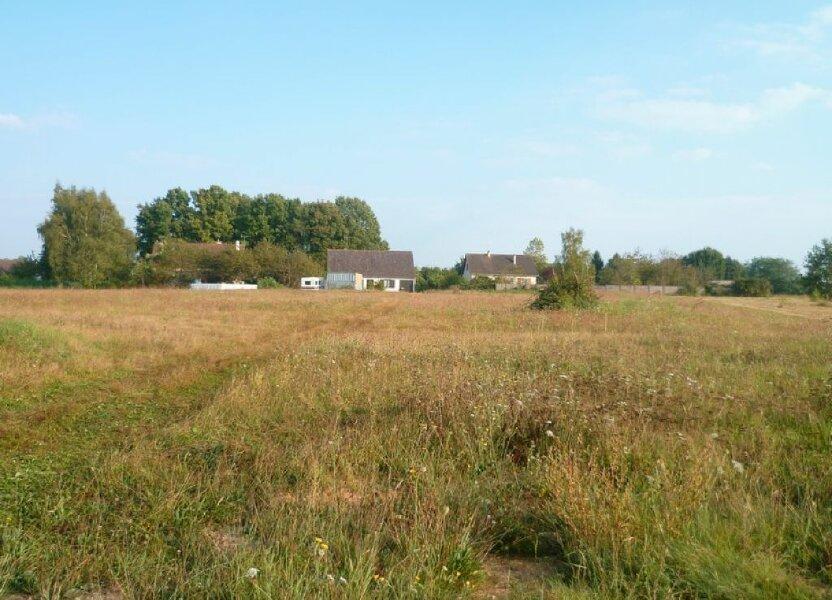 Terrain à vendre 1250m2 à Sainte-Geneviève-des-Bois