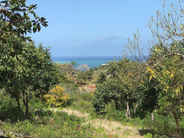Terrain à vendre  4274m2 à Ile Maurice vignette-1