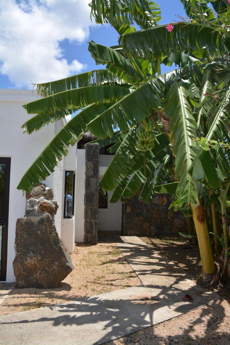 Maison à vendre 5 700m2 à Ile Maurice vignette-23