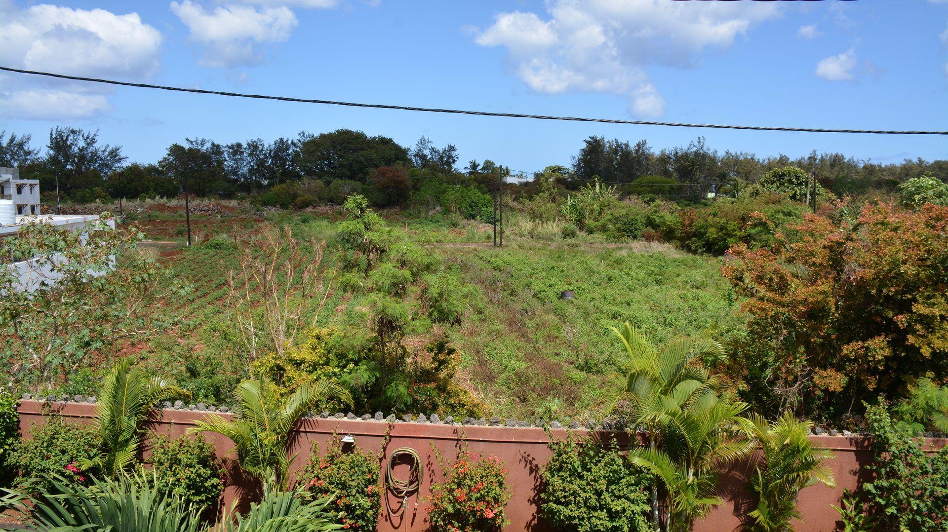 Maison à vendre 4 147m2 à Ile Maurice vignette-16