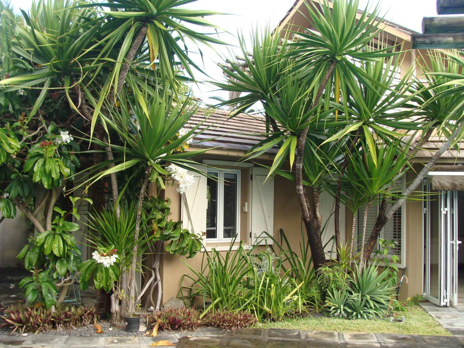 Maison à vendre 8 320m2 à Ile Maurice vignette-13