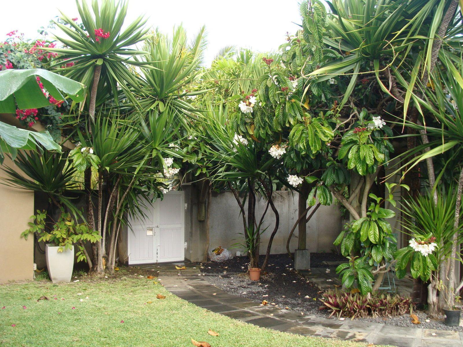 Maison à vendre 8 320m2 à Ile Maurice vignette-4