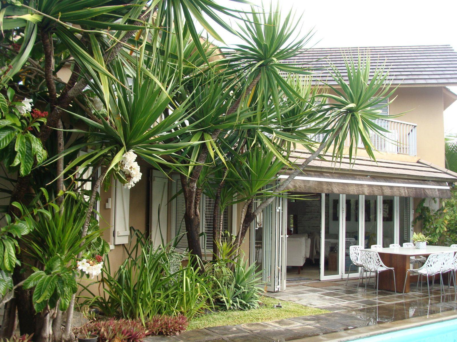 Maison à vendre 8 320m2 à Ile Maurice vignette-18