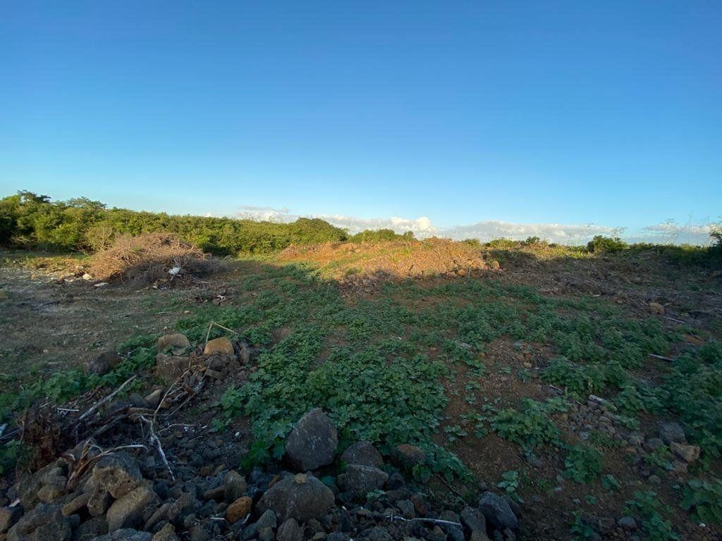 Terrain à vendre 0 3690m2 à Ile Maurice vignette-1