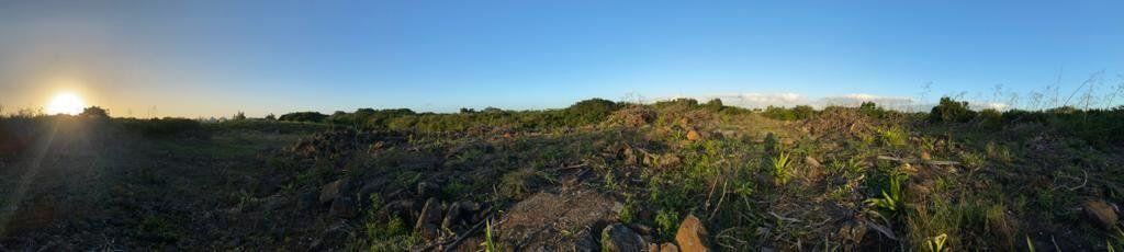 Terrain à vendre 0 3690m2 à Ile Maurice vignette-6