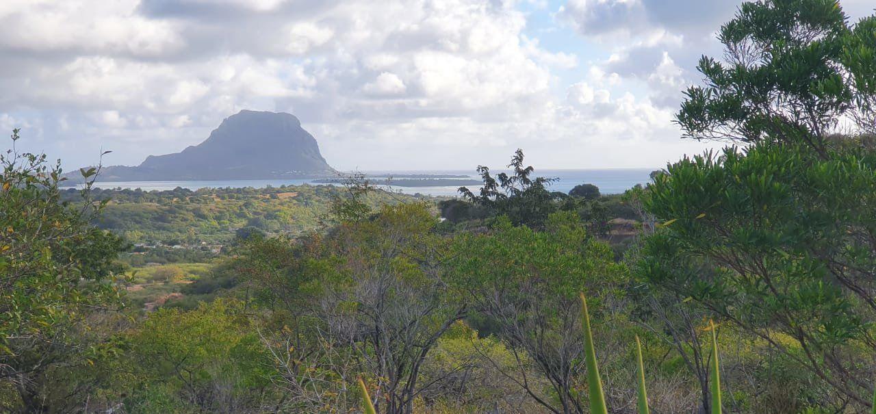 Terrain à vendre 0 4377m2 à Ile Maurice vignette-1