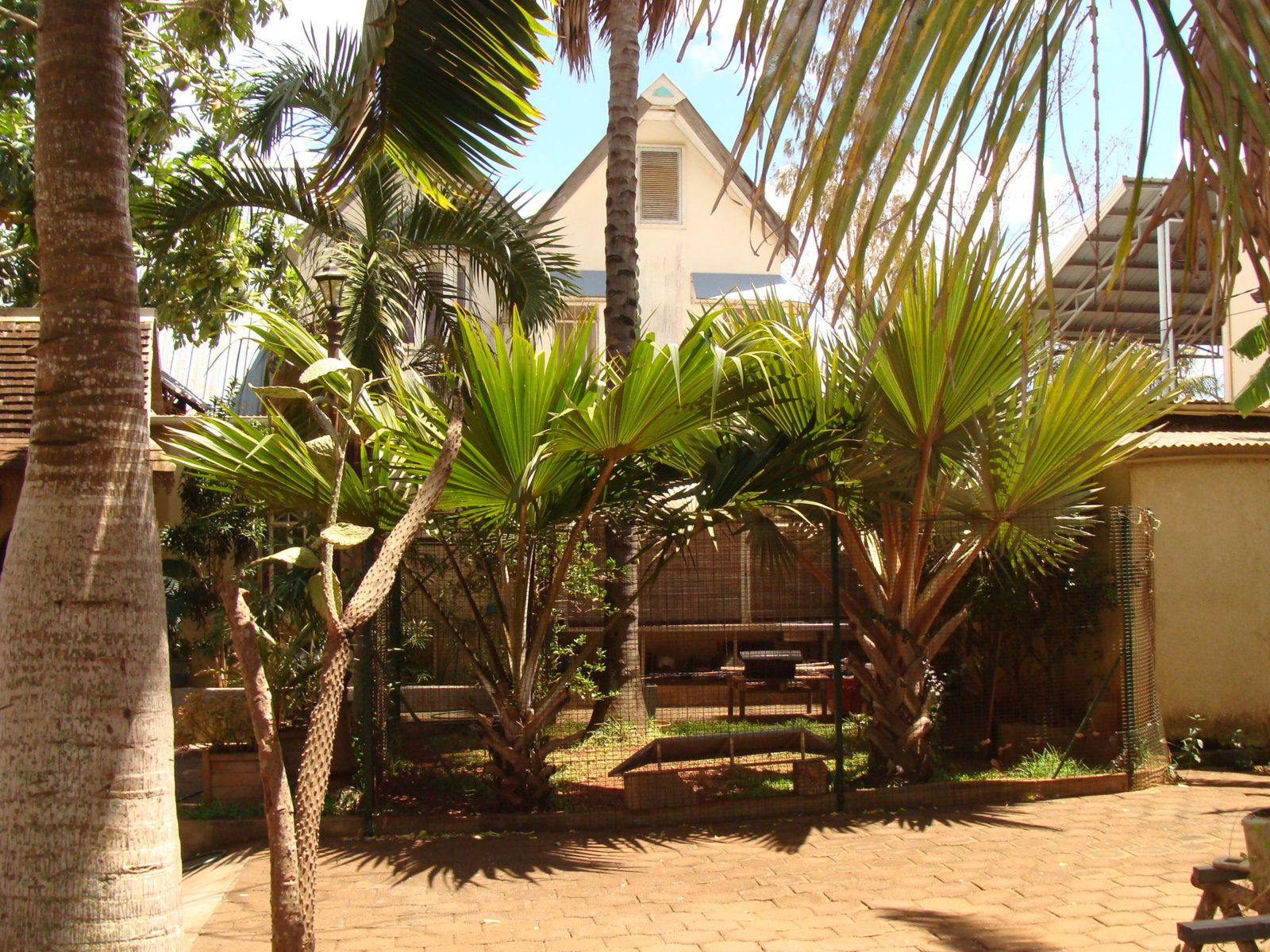 Maison à vendre 10 367m2 à Ile Maurice vignette-29