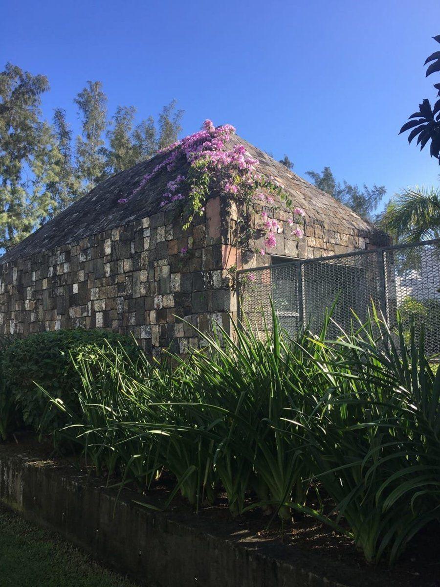 Maison à vendre 5 3657.57m2 à Ile Maurice vignette-21