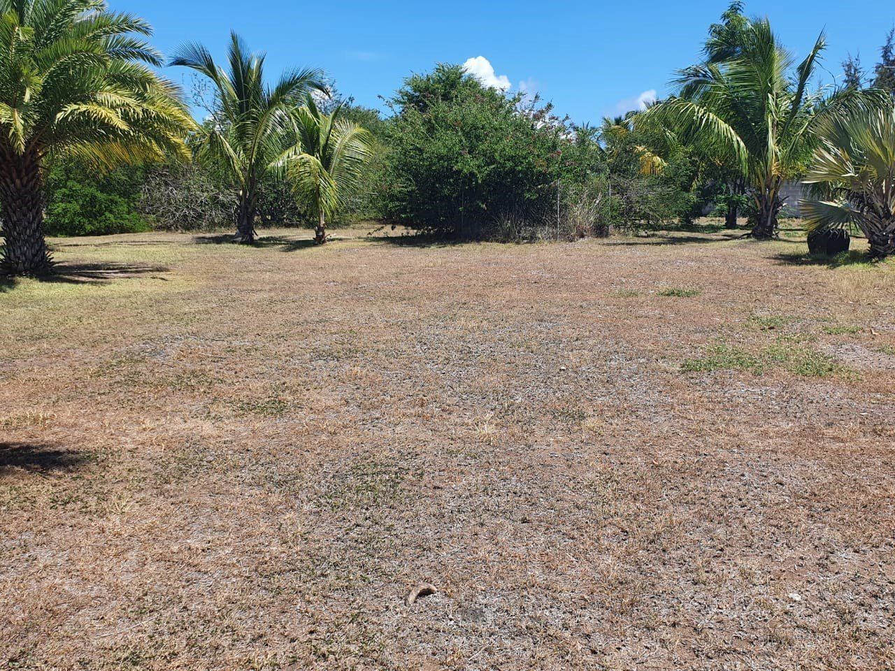 Terrain à vendre  5230.67m2 à Ile Maurice vignette-1